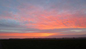 Morgenstond in de polder