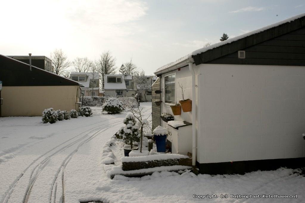 sneeuw 27-02-2013_8.jpg