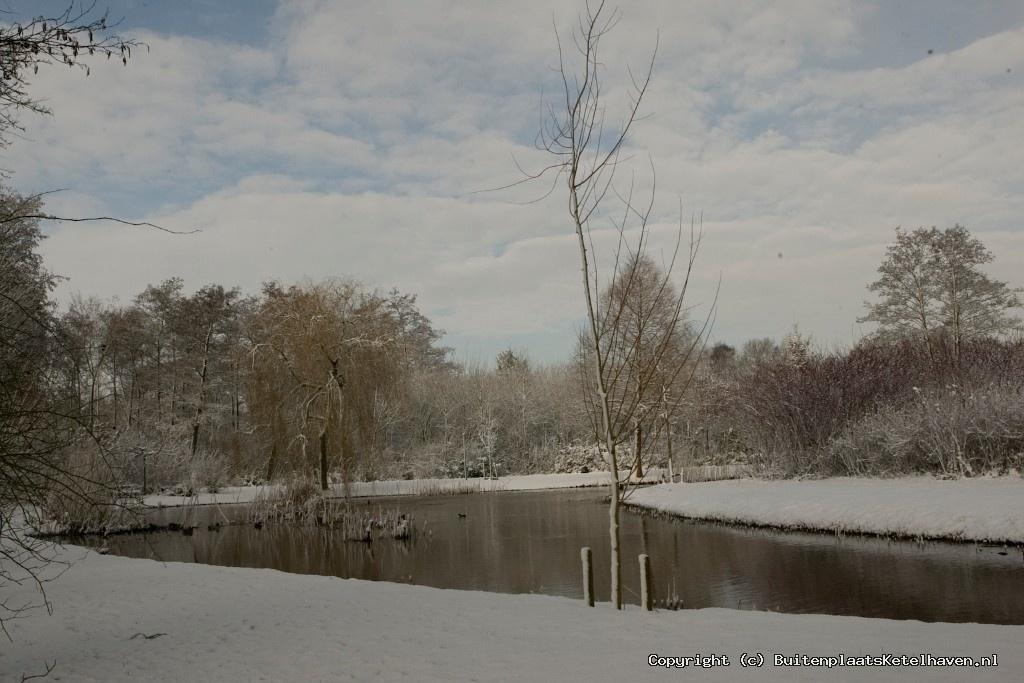 sneeuw 27-02-2013_15.jpg