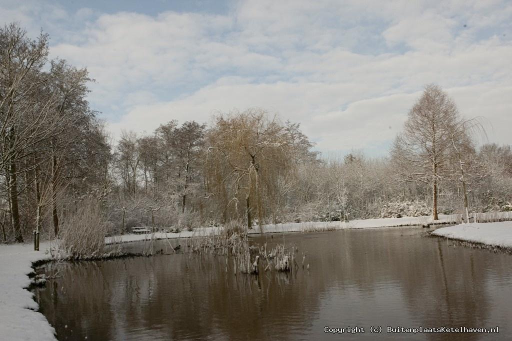 sneeuw 27-02-2013_16.jpg