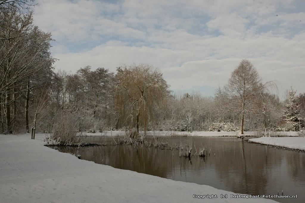 sneeuw 27-02-2013_17.jpg