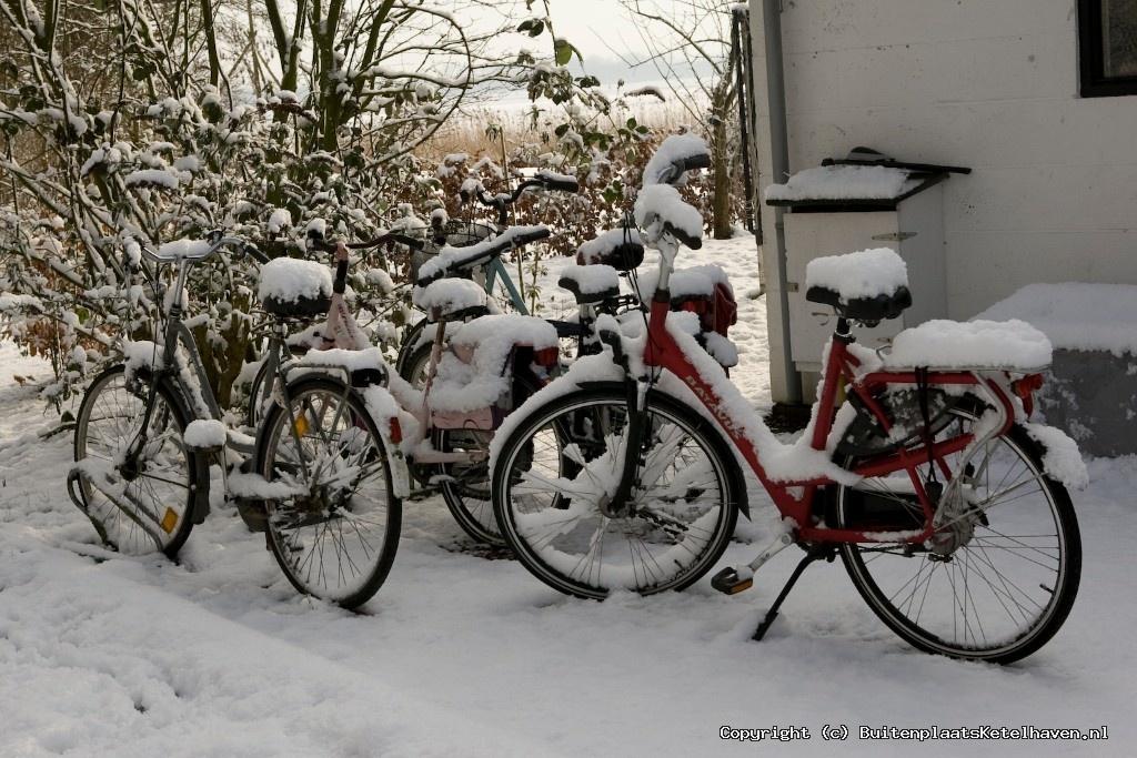 sneeuw 27-02-2013_23.jpg