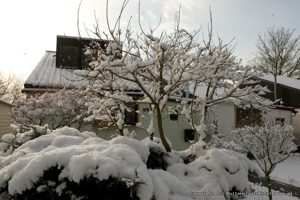 sneeuw 27-02-2013_24.jpg