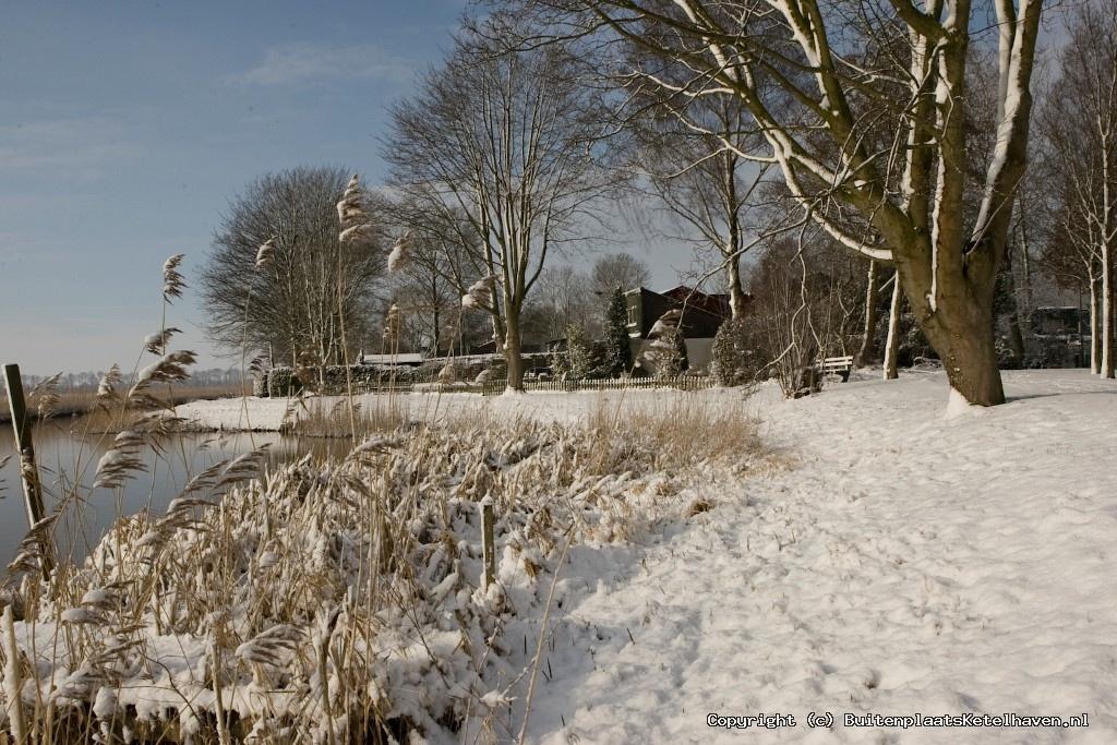 sneeuw 27-02-2013_26.jpg