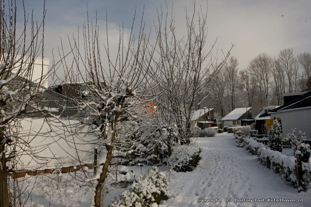 sneeuw 27-02-2013_32.jpg