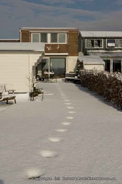sneeuw 27-02-2013_53.jpg