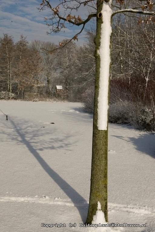 sneeuw 27-02-2013_60.jpg
