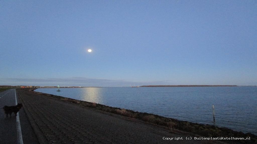 Haven onder Maanlicht