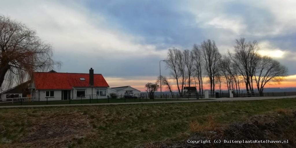 Winter in de polder.