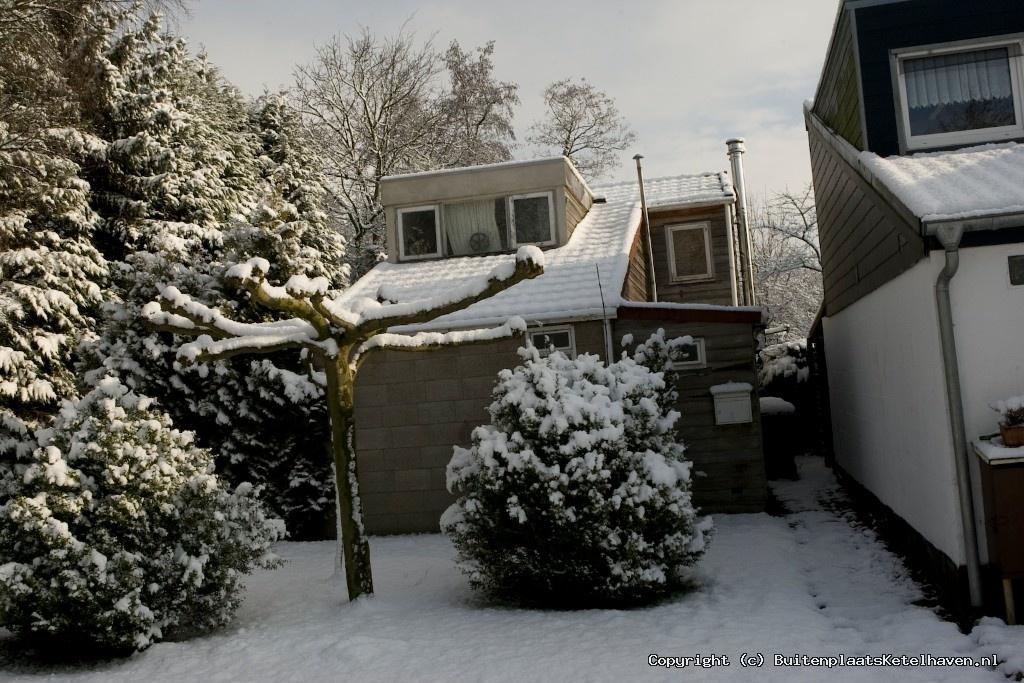 sneeuw 27-02-2013_45.jpg