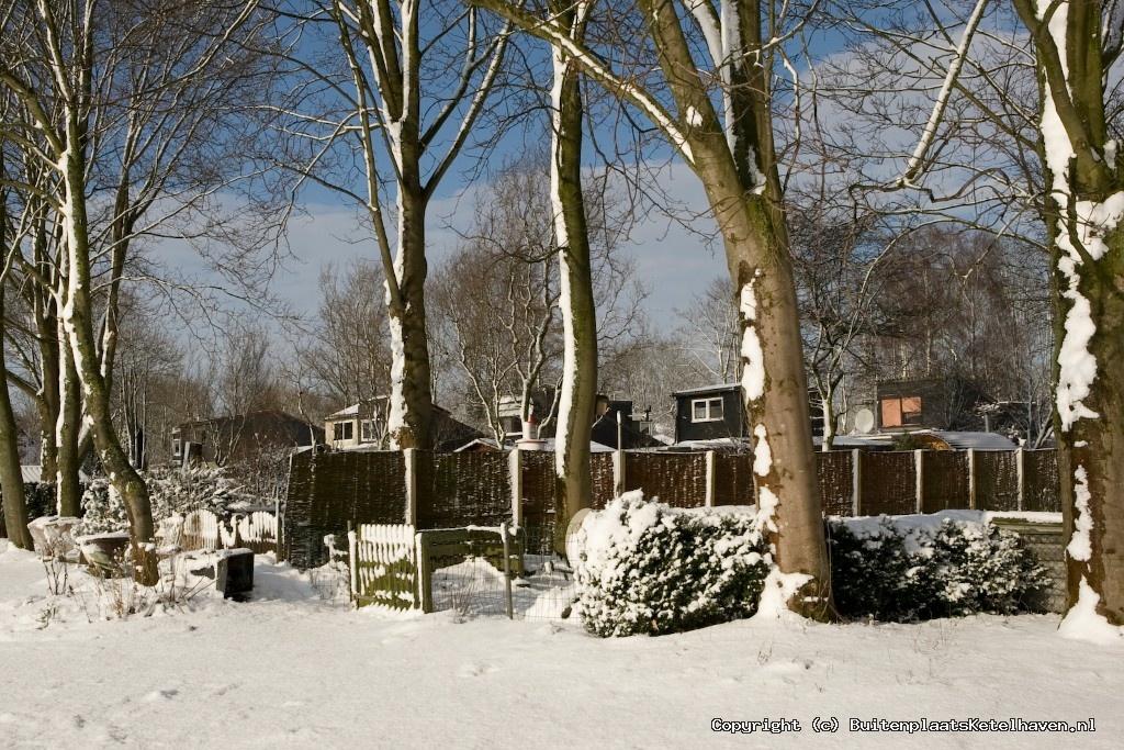 sneeuw 27-02-2013_56.jpg