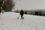 sneeuw 27-02-2013_14.jpg
